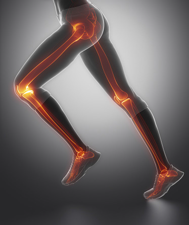 Person's legs with bones highlighted